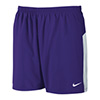 Nike Men's Dash Short